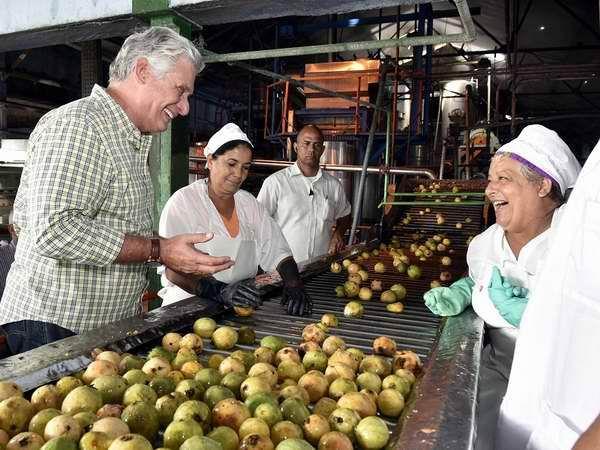Realiza Miguel Díaz-Canel visita de gobierno a Pinar del Río